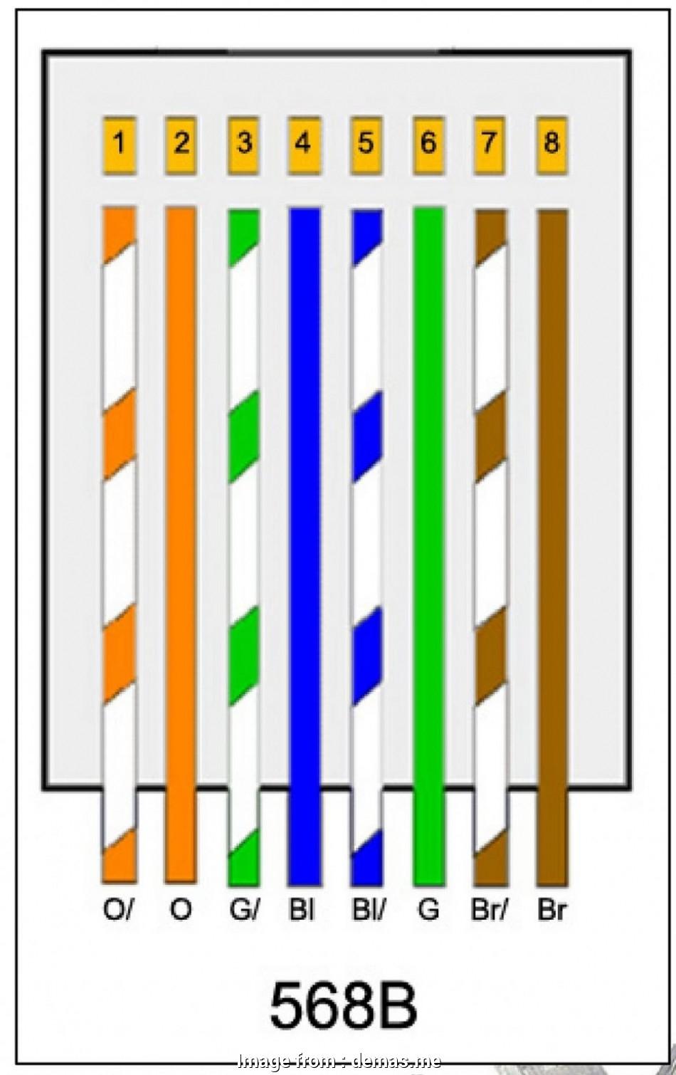 Cat 6 Wiring Diagrams 568A Vs 568B - Seniorsclub.it